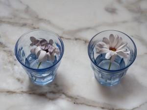 Margarita en agua vitalizada