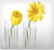 El vaso de la derecha contiene agua remolineada